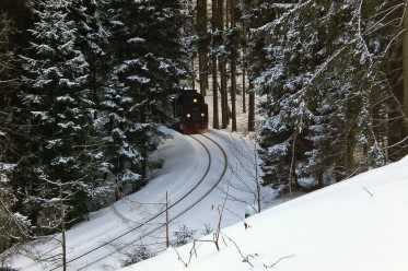 Familienurlaub im Harz: Landal Parks Salztal Paradies